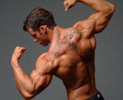 Как получить широкие плечи
